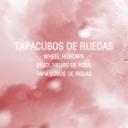 Tapacubos de Rueda para Vehículo Industrial